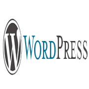 wordpress-sayfa-yapımı-konya-3